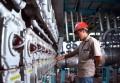 Produção Industrial cresce 0,8% em julho