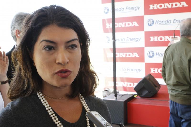 Elbia diz que subsídio com retirada escalonada agrada aos empresários que operam as fontes alternativas