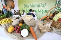 Programa Mesa Brasil Sesc distribui alimentos