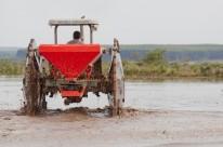 Menor percentual no trabalho de semeadura está nas regiões da Planície Costeira e na Depressão Central