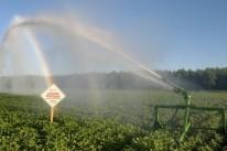 A irrigação de lavouras usa água das fontes naturais