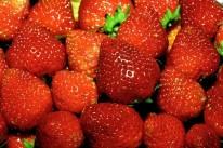 Frutas têm apresentado bom calibre e coloração