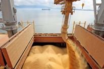 Volume de soja embarcada subiu 19% ante 2014, alcançando 54,32 milhões de toneladas