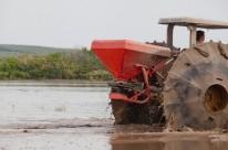 Chuvas geraram atraso no plantio do arroz em diversas áreas do Estado