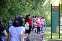Ensino fundamental perde 1,8 milhão de matrículas em 5 anos no Brasil, diz censo