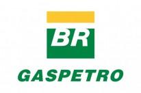 eco logo Gaspetro crédito Agência Petrobras