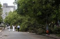 Rua José Bonifácio, que aos domingos recebe o tradicional Brique da Redenção, foi tomada por galhos de árvores após o temporal