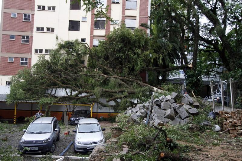Segundo a prefeitura, mais de 2 mil árvores caíram em Porto Alegre