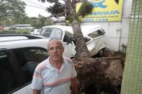 Anselmo teve perda total com a queda de árvore sobre o veículo à venda