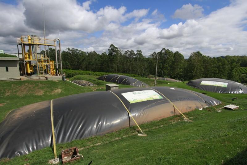 Biocombustível é gerado a partir da decomposição de dejetos orgânicos
