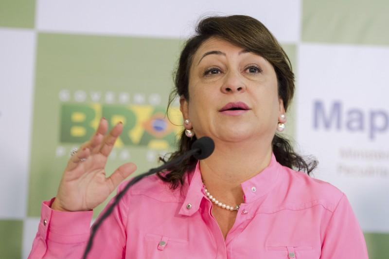 Anúncio foi feito hoje pela ministra Kátia Abreu