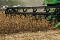 Somente a soja deve representar, neste ano, 36,5% do valor total entre todas as lavouras cultivadas no País