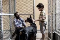 Mundo cão, com Lázaro Ramos, é uma das estreias na Capital
