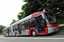 Veículos têm capacidade para transportar mais de 200 passageiros