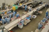 Operações verificam as condições de atuação de funcionários, como segurança das máquinas e ergonomia