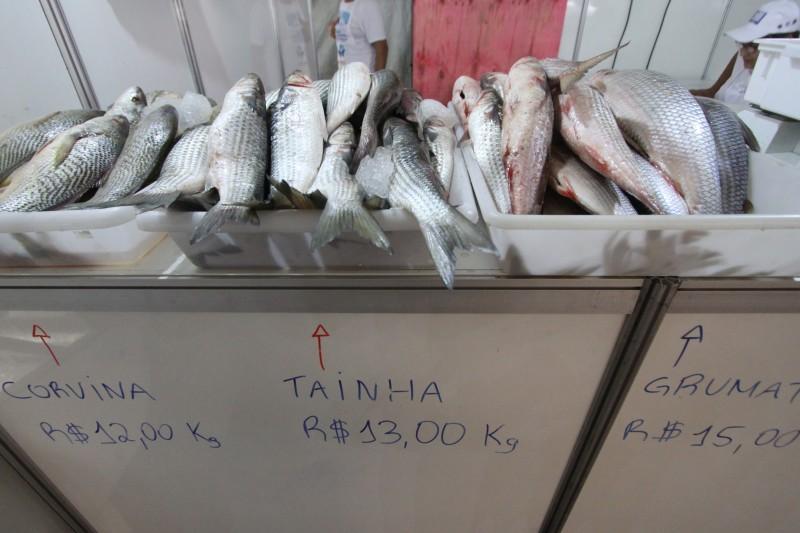 A alta no preço do pescado foi de 9,28%, o que deve fazer consumidor gastar mais