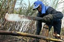 Um dos contenciosos envolve subsídios ao setor canavieiro tailandês