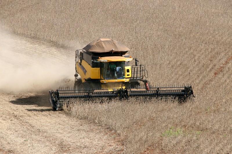 Supersafra de 238 milhões de toneladas de grãos é marco histórico