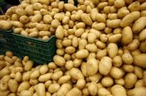 Alimentos típicos de festas juninas têm alta de 2,70%