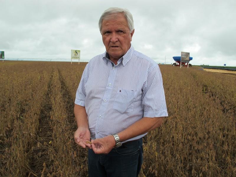 Teixeira acredita que 2017 seja melhor ainda devido a fatores climáticos mais regulares, adoção de novas sementes e irrigação