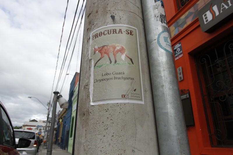 Cartaz com a imagem de um lobo-guará é uma das criações do Coletivo Criatura