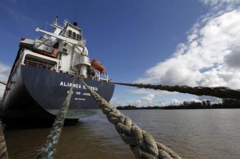 Trevisa pretende vender áreas de reflorestamento