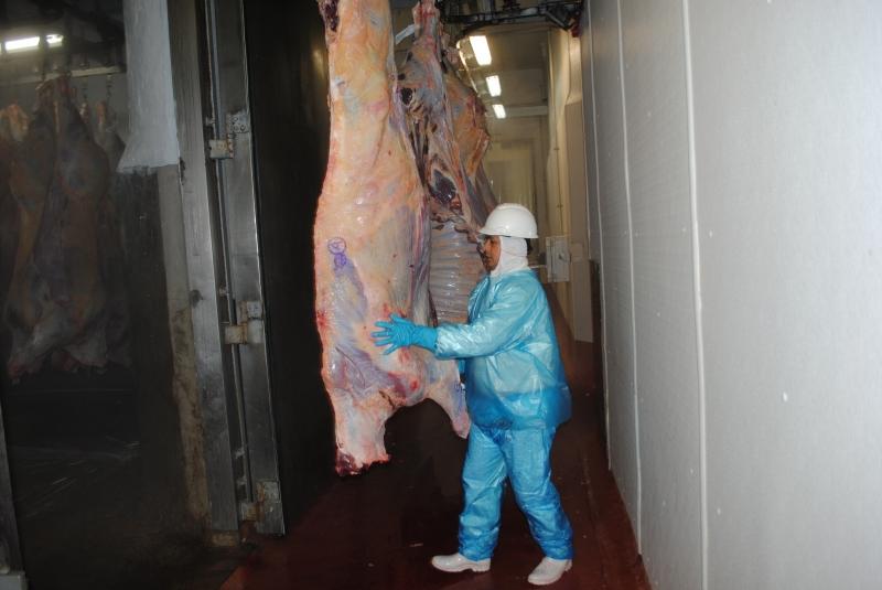 Acordo firmado na área de carne bovina com os Estados Unidos deve equilibrar perdas