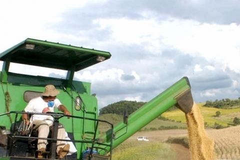 Comercialização da soja caiu 38,7%, equivalente a US$ 147 milhões