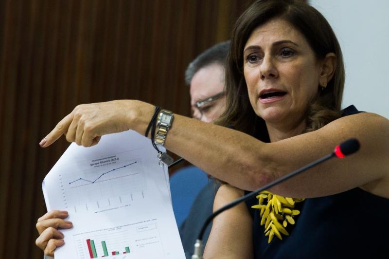 Marilene diz que o banco espera que empresas financiem parte dos projetos com emissão de debêntures