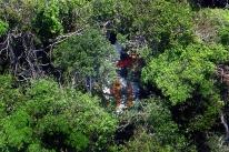 Justiça decreta nova prisão de pilotos de jatinho que derrubou avião da Gol