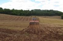 Soja avança sobre espaço do milho na lavoura
