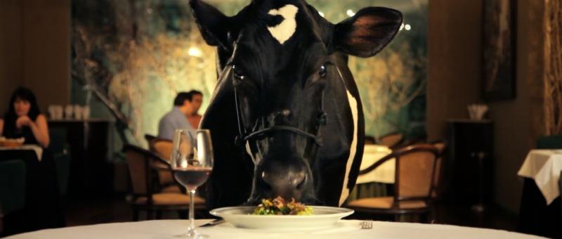 Filme Animal político, de Tião, abre mostra competitiva do Cine Esquema Novo