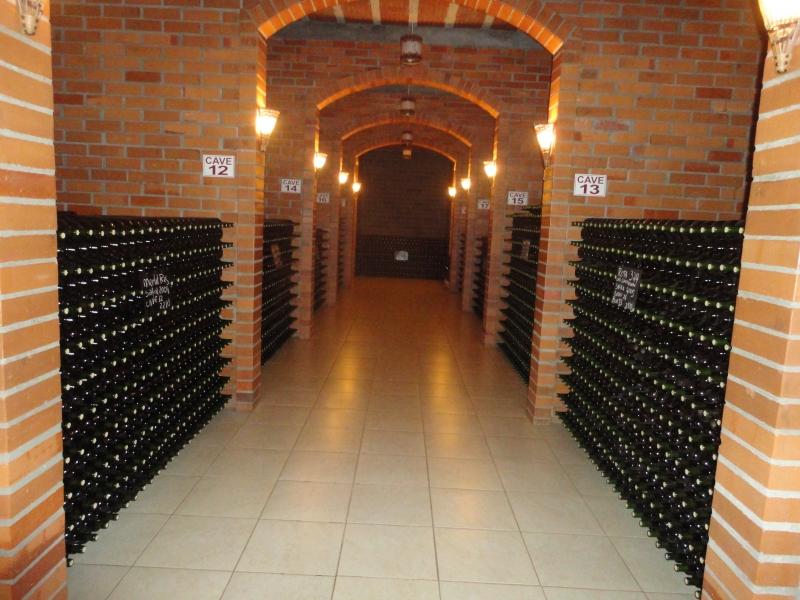 Vinícola Don Abel produz 50 mil garrafas ao ano, na cidade de Casca