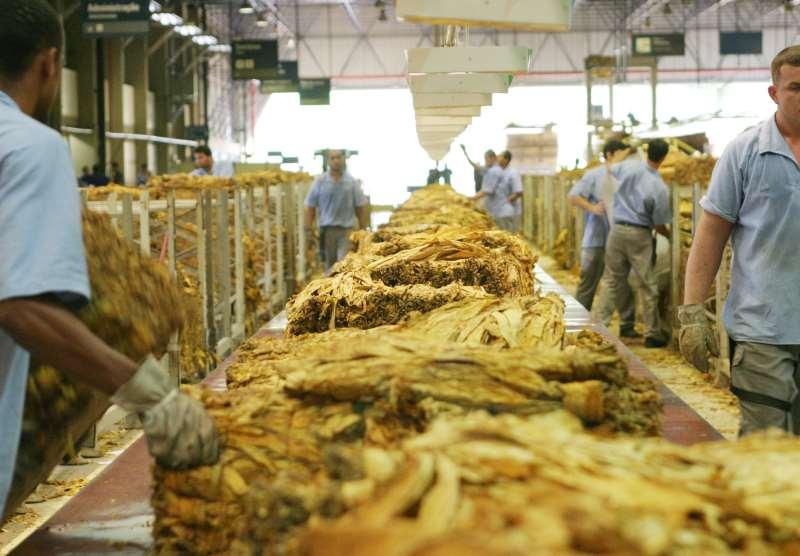 Fumo e seus produtos está entre os principais setores exportadores