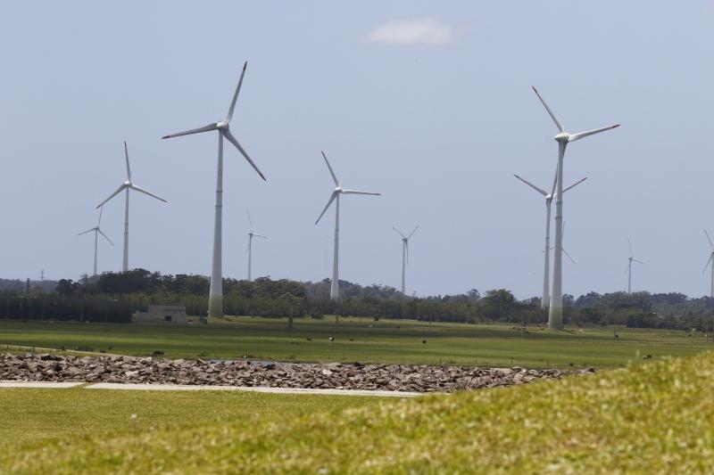 Capacidade limitada do sistema para escoar a energia gerada a partir dos ventos é entrave para a expansão