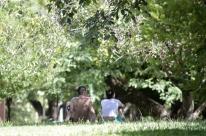 Multas podem ser pagas com projetos ambientais em Porto Alegre