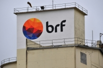 Ações da BRF sobem 4,2% após dois dias de queda