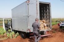 Indústrias gaúchas somam perdas de R$ 1,1 bi com roubos, furtos e vandalismos