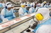 Exportação de carne de frango acumula 4,10 milhões de toneladas em 2018