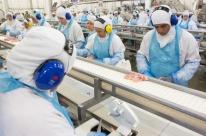 Governo divulga estudos sobre incentivos fiscais e impactos nas cadeias produtivas do agronegócio