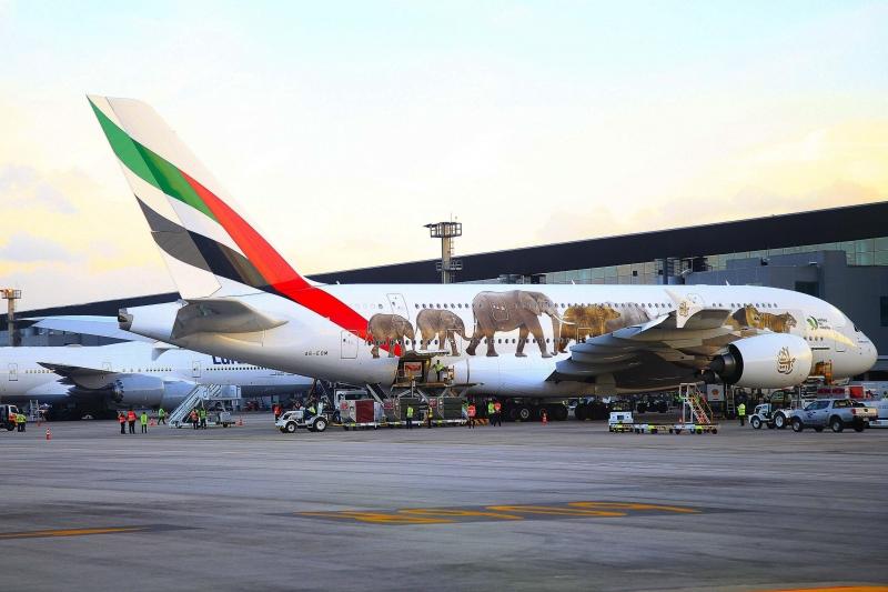 Airbus 380 da Emirates Airlines chega para ocupar espaço aberto com fim dos voos da Etihad Airways