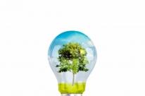 Bndes capta US$ 100 milhões para financiar a geração renovável