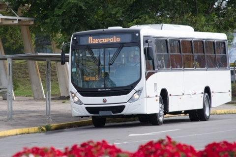 Marcopolo adquire participação em empresa argentina por US$ 9 milhões