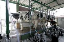 Ministério da Agricultura suspende importação de leite uruguaio