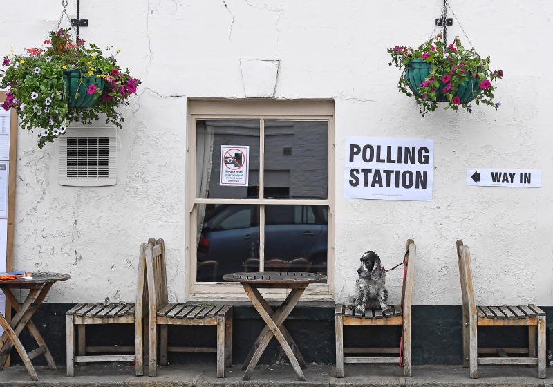 Tilly, a Cocker Spaniel dog, sits on a seat outside the Anglesea Arms pub, set up as a Polling Station, whilst her owner casts their ballot paper, in London on June 8, 2017, as Britain holds a general election.                        