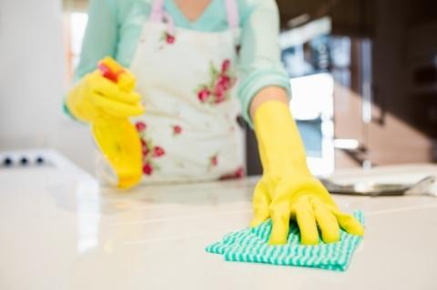 Lei dos empregados domésticos enfrenta desafios a sua plena implantação