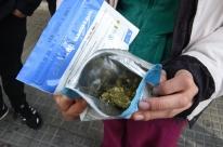 Procura faz maconha sumir de farmácias do Uruguai