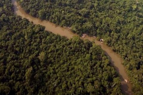 Jamanxim perderá 349 mil hectares, que poderão ter atividades rurais