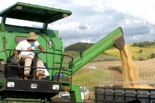 Exportação da soja em grão teve alta de 178,8% em um ano