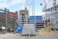 AGU recorreu ao TRF-3 contra suspensão de exportação de animais vivos, diz Maggi